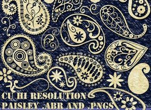 Funky_Paisley_Brushes_by_debh945